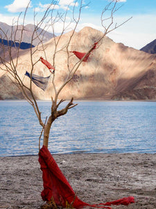Prayer Flags at Pangong Tso, Changtang, Ladakh