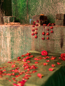 Red roses & Green cloth, Octagonal Stepwell