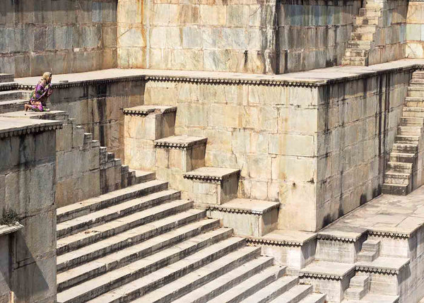 Roaring Tiger Stepwell in Rajasthan 2