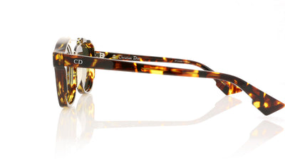 Dior Abstract TVZ Havana Sunglasses
