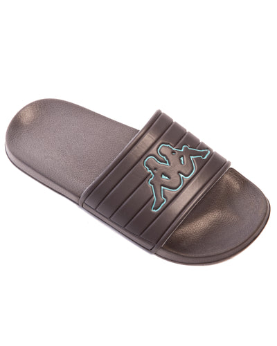 Logo Matese Grey Green Slides