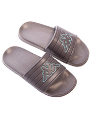 Logo Matese Slides - Grey Green