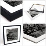 Branching Tree in Black and White no 1 | Limited Edition Fine Art Photography