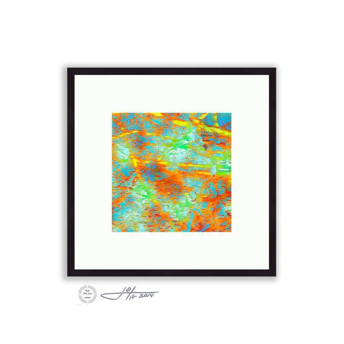 Abstract - Abstract Tree Detail 3 | Limited Edition Framed - jspfinearts