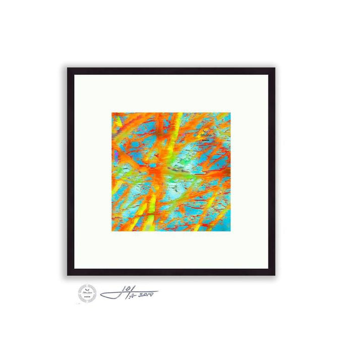 Abstract - Abstract Tree Detail 2 | Limited Edition Framed Print - jspfinearts