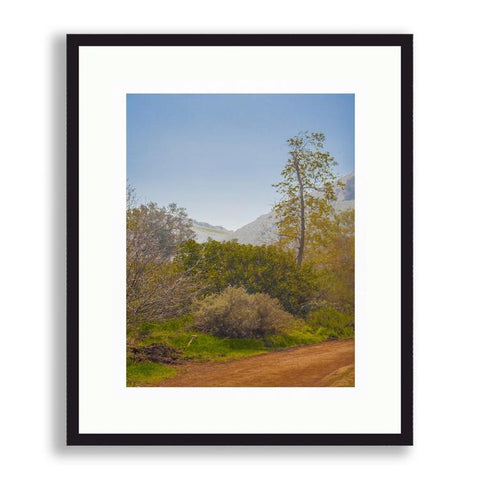California - California Country Landscape | Limited Edition - jspfinearts