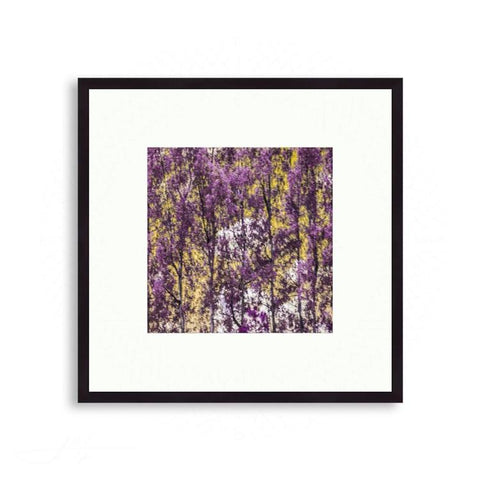 Abstract - Forest for the Trees No. 1 (Purple and Yellow) | Limited Edition - jspfinearts