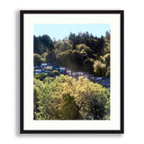 Oregon - Oregon: Colors in The Trees | Limited Edition - jspfinearts