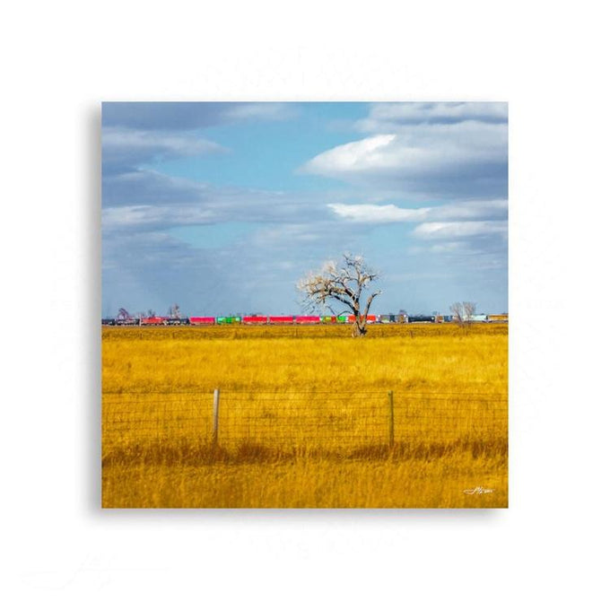 Landscapes - Come Aboard the Meadow Express | Limited Edition - jspfinearts