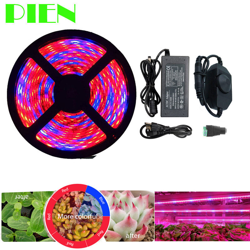 5M LED Full Spectrum Grow Strip