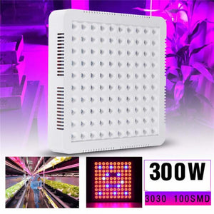 300W Full Spectrum LED Grow Panel