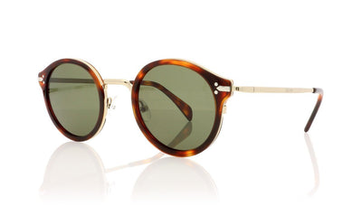 Céline Joe CL41082/S 3UA Havana Sunglasses