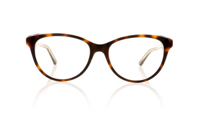 Dior Montaigne17 G9Q Havana Glasses