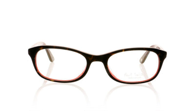 Paul Smith PM8190 1228 Tort Glasses