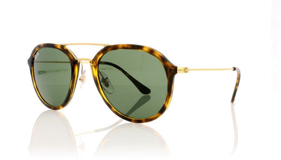 Ray-Ban RB4253 710 Light Havana Sunglasses at OCO