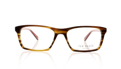 Ted Baker Woody TB8122 105 Amber Horn Glasses