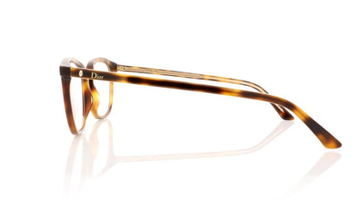 Dior Montaigne 35 Montaigne35 VSX Havana Glasses at OCO