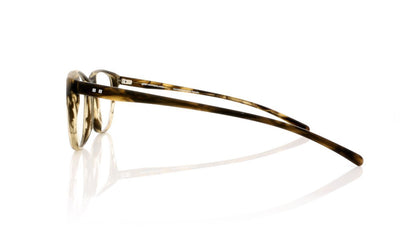 Götti WILLY BSB Havanna Brown Transparent Glasses at OCO