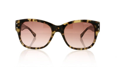 Oliver Goldsmith Hampstead 1 Vanilla Tortoiseshell Sunglasses at OCO