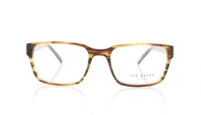 Ted Baker Principle TB8097 105 Amber Horn Glasses at OCO