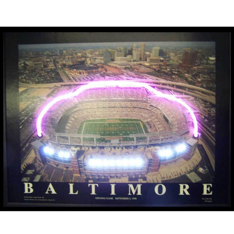 Neonetics Baltimore Football Stadium Neon/led Picture 3Rstad Neon Signs