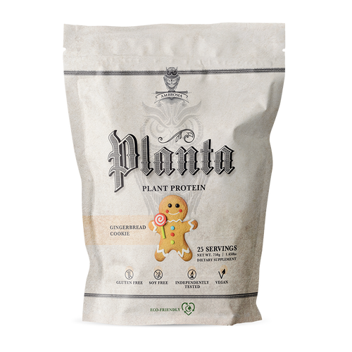 Planta Gingerbread Cookie