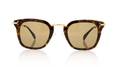 Céline Vic CL41402/S ANT Dark Havana Sunglasses
