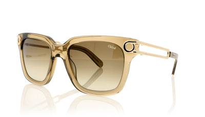 Chloé CE678S 273 Light Turtledove Sunglasses