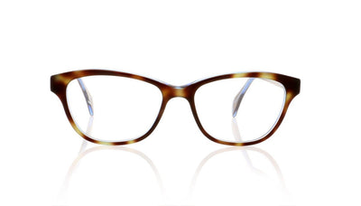 Claire Goldsmith Ellis 3 Electric Tortoise Glasses