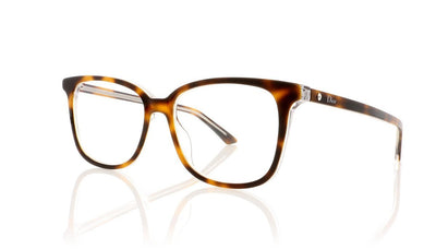 Dior Montaigne 27 U61 Havana Glasses
