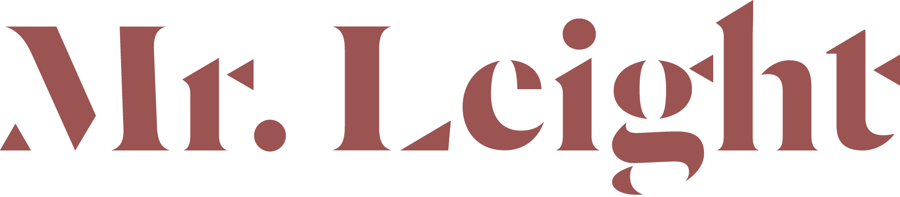 Mr. Leight Logo