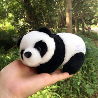 16cm Lovely Super Cute Stuffed Kid Animal Soft Plush Panda Gift Present Doll Toy - inaaz.biz