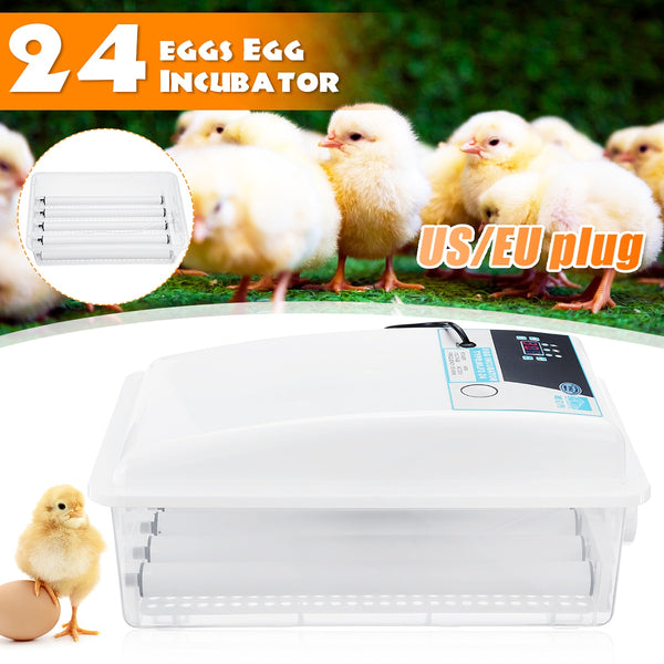 Automatic Egg Incubator, 24 Eggs Brooder Machine, Chicken Duck Egg Hatchery Machine - inaaz.biz