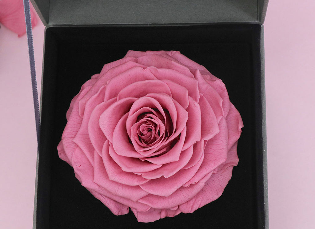 Giant Rose and Queen Necklace