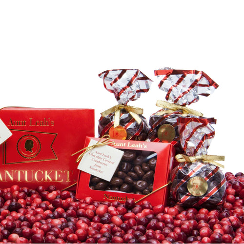 One Pound Box of Chocolate Covered Cranberries