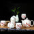 Bird & Floral Paint Porcelain Kung Fu Tea Set Cups & Teapot 7 Pieces