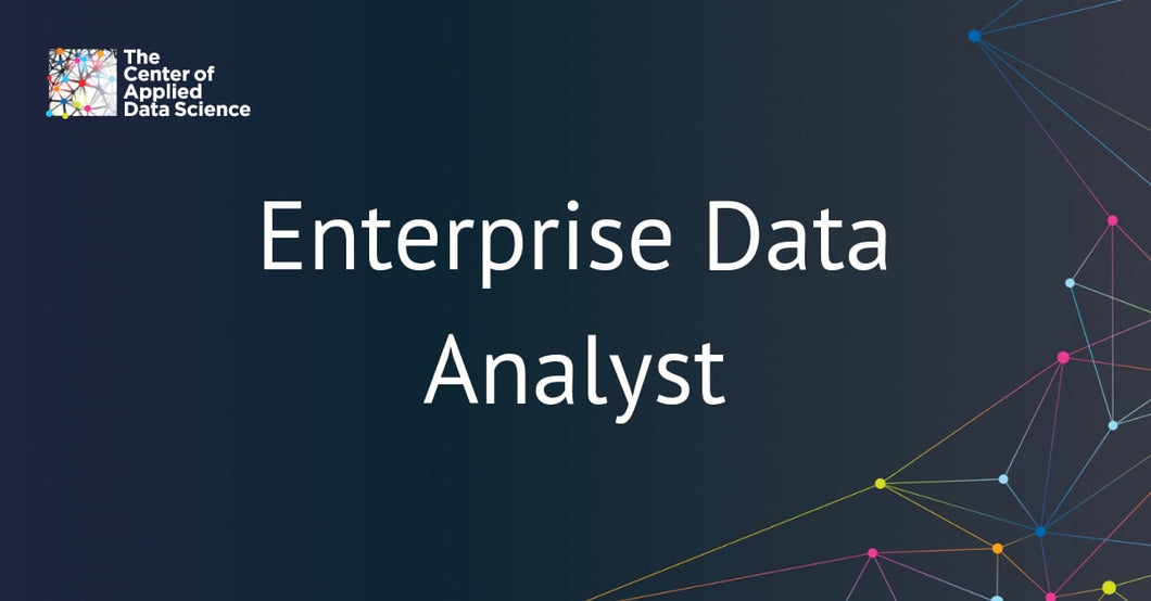 Enterprise Data Analyst