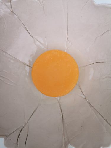 Beach Babe Conditioner bar - Orange blossom