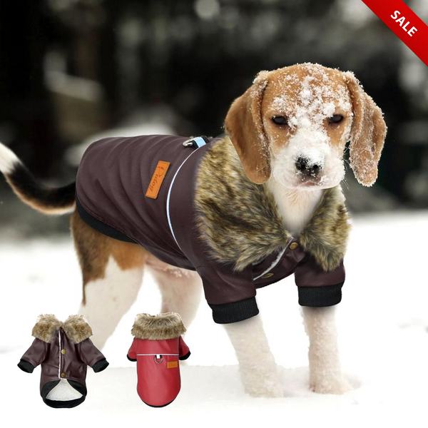 Winter Waterproof Dog Jacket