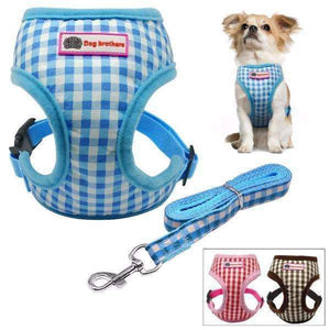 Dog Brothers Puppy Harness & Leash