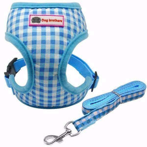 Dog Brothers Puppy Harness & Leash: Blue / L