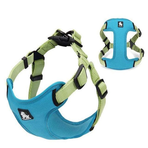 Durable Padded Reflective Harness Vest: Blue / L