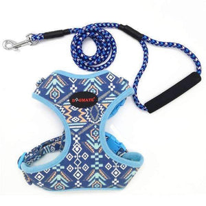 Funky Fashion Pet Dog Harness & Leash: blue / S chest 34-44cm