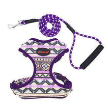 Load image into Gallery viewer, Funky Fashion Pet Dog Harness & Leash: purple / S chest 34-44cm