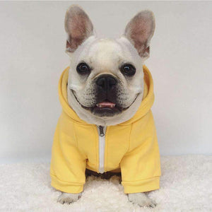 Pawz Fashion Zipper Dog Hoodie