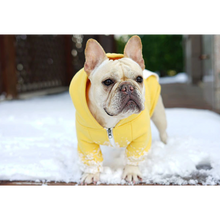 Load image into Gallery viewer, Pawz Fashion Zipper Dog Hoodie