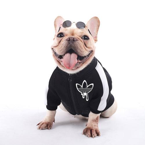 Fashion and Sporty Dog Sweatshirt