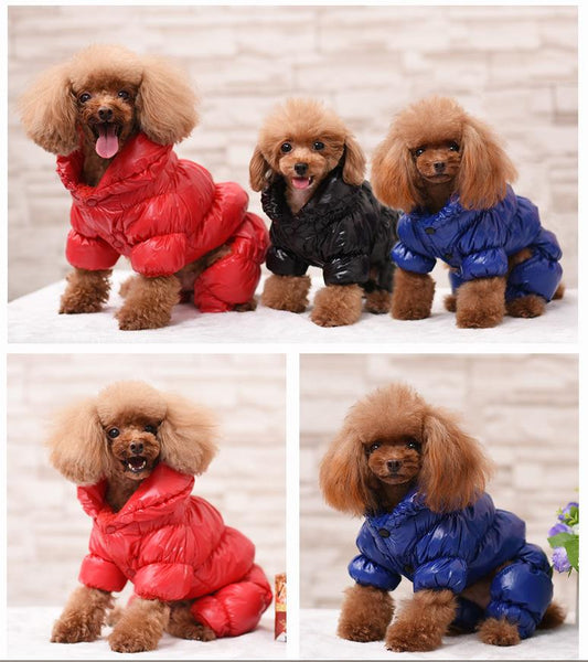 Waterproof Dog Coat For Small and Medium Dogs
