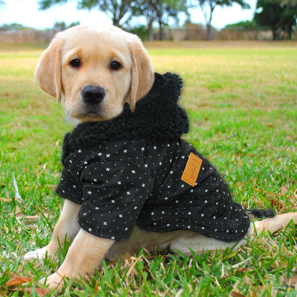 Warm Winter Dog Hooded Jacket