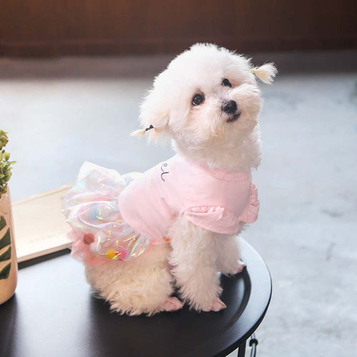 Angel Dog Dress